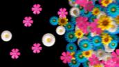 فوتیج حرکت گل- کد112201