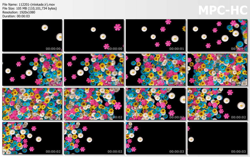 تصاویربندانگشتی فوتیج گل-کد 112201