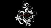 فوتیج فلوریش-کد 112111