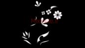 فوتیج فلوریش-کد 112124