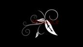 فوتیج فلوریش-کد 112126