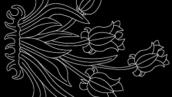 طرح هنری 180001